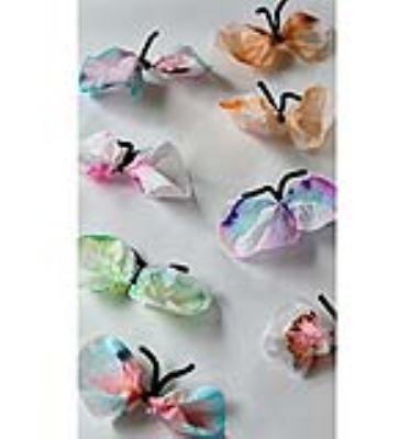 پروانه های رنگی با یک آزمایش