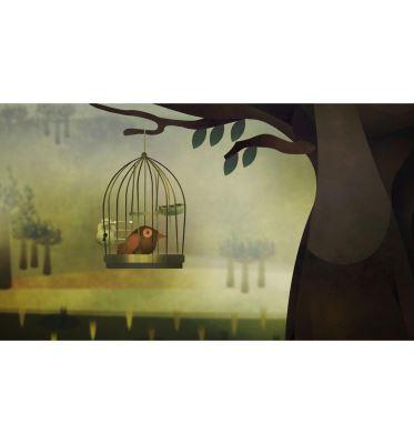توکا در قفس