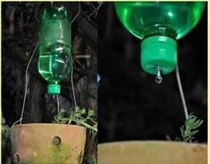 شیوه آب رسانی به گیاهان