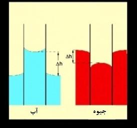 اختلاف ارتفاع مایع در لولهی مویین و ظرف بشر