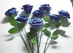 گل رُز آبی