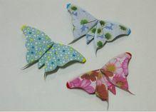 پروانه2