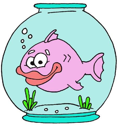 ماهی در تنگ
