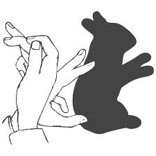 بازی با سایه