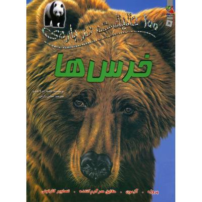 100 حقیقت دربارهی خرسها