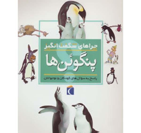 چراهای شگفتانگیز پنگوئنها