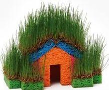 خانه جنگلی