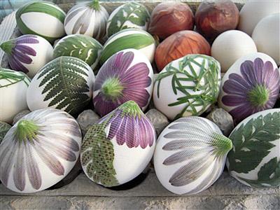 تخم مرغ رنگی 4