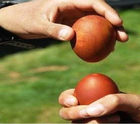 تخممرغ بازی
