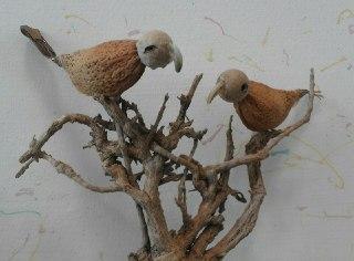 پرندگان هسته ای