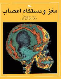مغز ودستگاه اعصاب