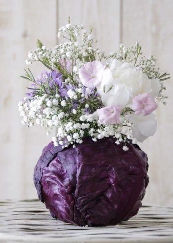 گلدان با بوته کلم